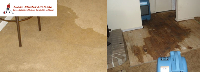 Carpet Water Flood Restoration Services