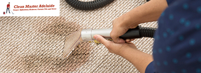 Professional Carpet Cleaning Services Adelaide