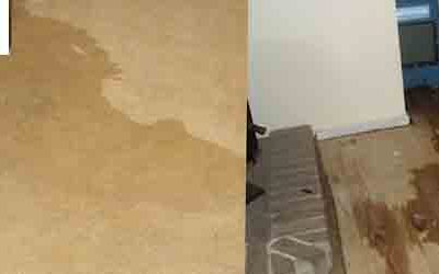 Know After Flood Carpet Cleaning Processes at Home