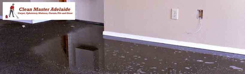 Flood Water Damage Carpet Restoration